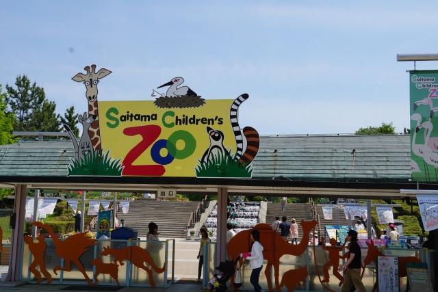 10. 動物と触れ合って癒される「埼玉県こども動物自然公園」