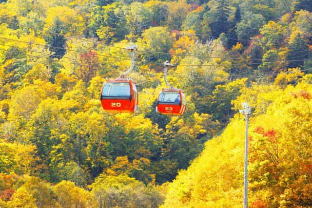 2. ゴンドラに揺られながら目下の紅葉景色を堪能「札幌国際スキー場」