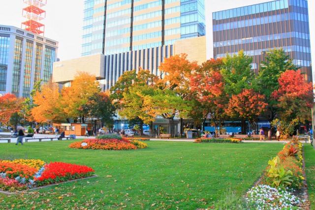 10. 札幌の紅葉といったらここ!「大通公園」