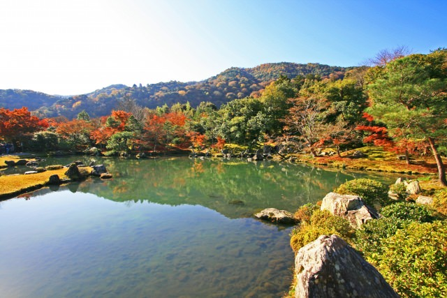 2. 特別名勝の庭園から望む嵐山の紅葉を楽しむ「天龍寺」