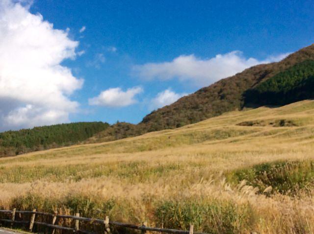 3. ススキの草原とのコントラストが美しい「仙石原」