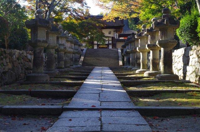 6. 大津の桜の名所でもある歴史深い寺院「三井寺(園城寺)」