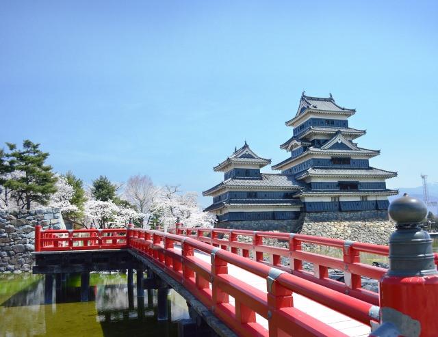 3. 国宝の天守閣をバックに夜桜を楽しむ。「国宝 松本城の桜」