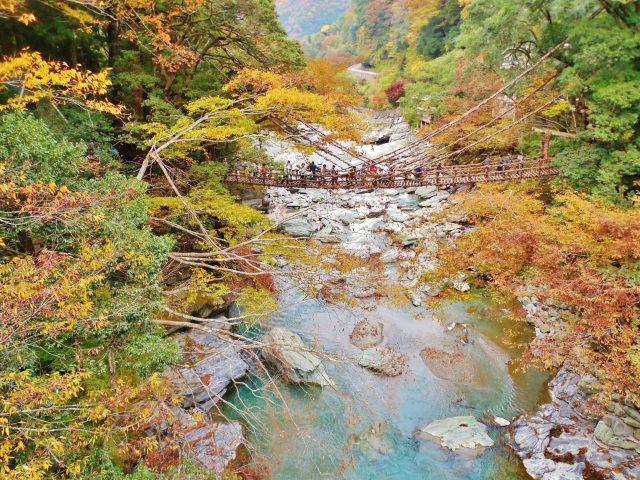 3. 秘境にひっそりと揺れる四国の観光スポット!祖谷の「かずら橋」