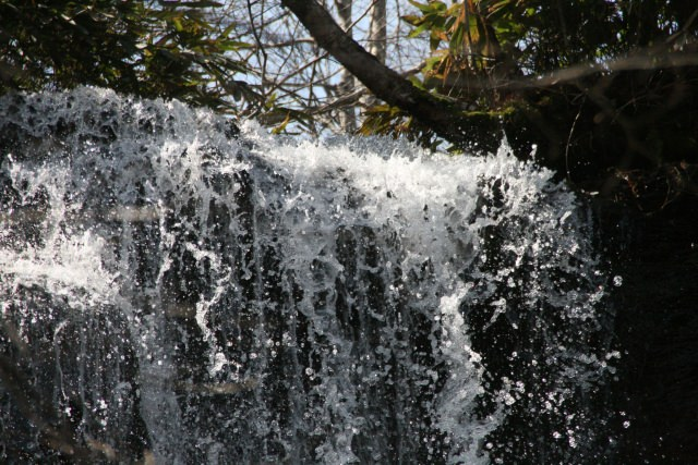 5. ここでしか見れないふわふわの紅葉景色!「滝野すずらん丘陵公園」