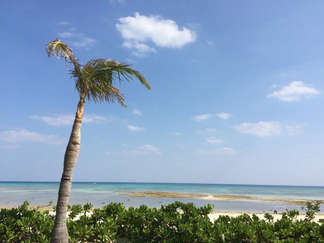 8. 美しいビーチで優雅に過ごす!久米島でも特におすすめ「イーフビーチ」