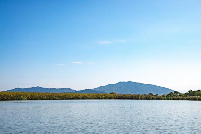 5. 琵琶湖の浮かぶ島を巡る定番観光を楽しむ「琵琶湖クルージング」