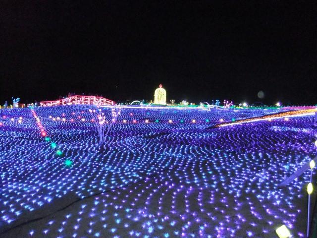 1. 美しい花々と風景のなか楽しめる千葉県の観光スポット「東京ドイツ村」