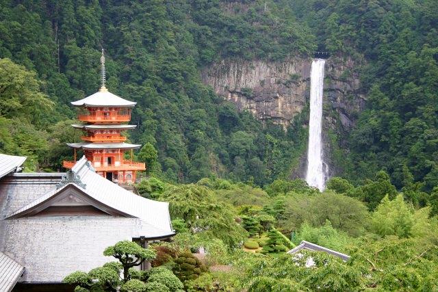 10. 古社の小ぶりな桜を愛でたい「熊野那智大社」