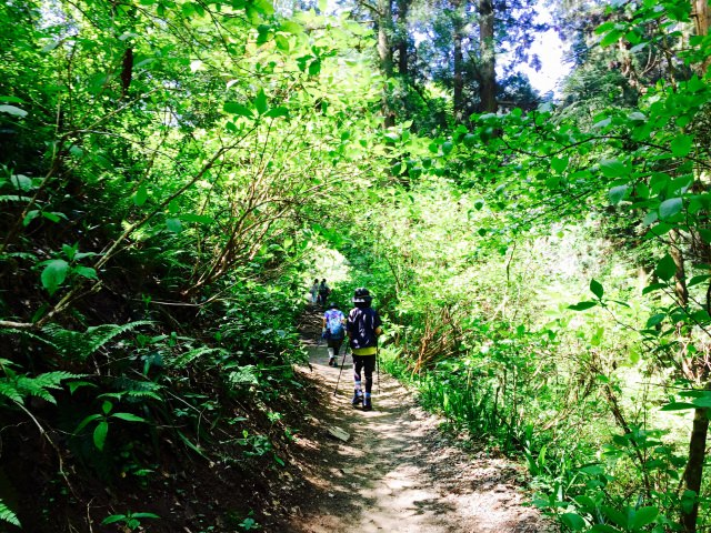 登山に挑戦!こんなにある登山/散策コース