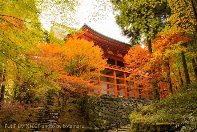1. 2000本もの紅葉で色づく遠景を楽しむ!「比叡山」