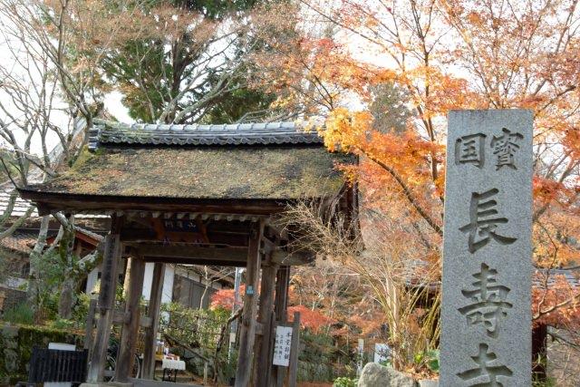 3. 奈良時代に創建され「湖南三山」で紅葉巡り!