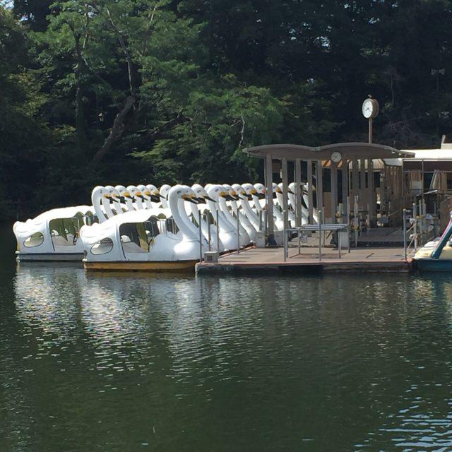 3. 三鷹を代表する公園の一角「井の頭池」