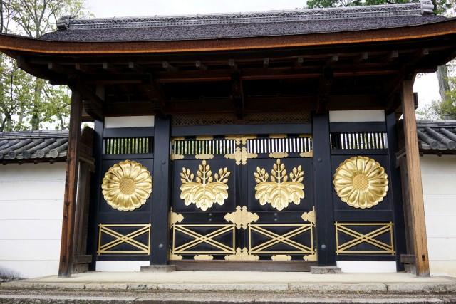 醍醐寺へ観光に行こう!